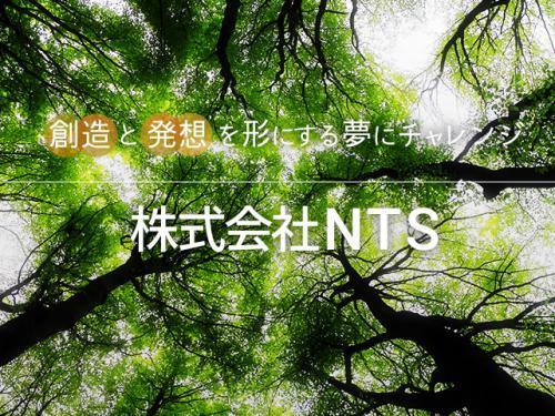 株式会社NTS